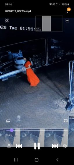 Taken from a higher angle, it is clear that the woman was wearing a long red dress as she walked through the yard.