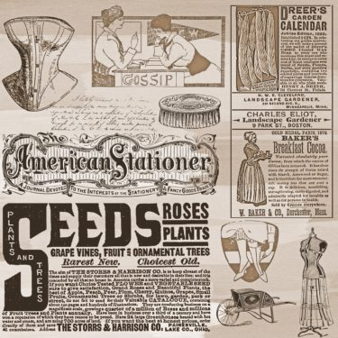 A vintage style newspaper with adverts for things like rose seeds and breakfast cocoa.
