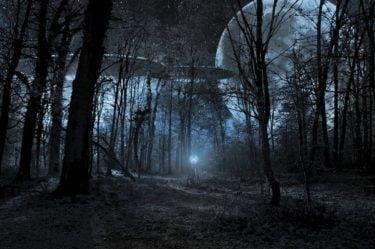 Two UFOs alongside a full moon in a dark woodland