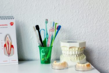 A shelf in a dental office with models of teeth and a selection of toothbrushes