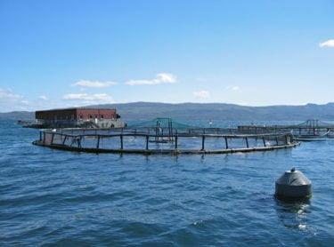 John Allan / Salmon farm in Portree Bay / CC BY-SA 2.0