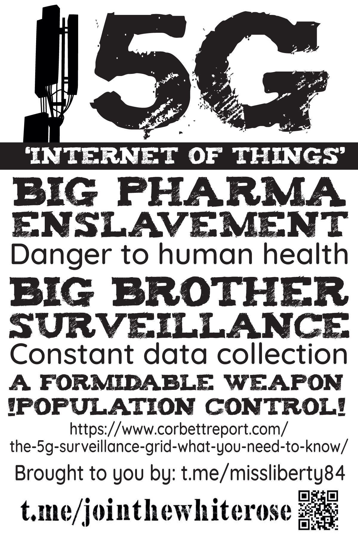 """""""5G; Internet of things; big pharma; enslavement; danger to human health; big brother surveillance; constant data collection; a formidable weapon; !population control!"""" - black text on a white background"""
