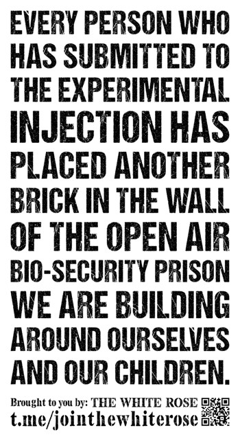 """""""Every person who has submitted to the experimental injection has placed another brick in the wall of the open air bio-security prison we are building around ourselves and our children"""" - black text on a white background"""