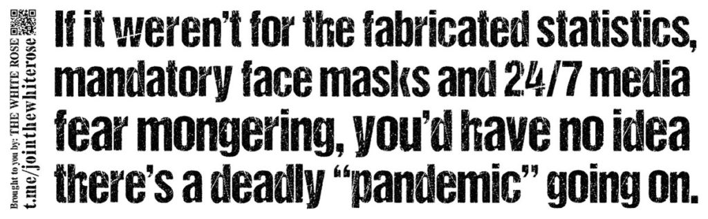 """""""If it weren't for the fabricated statistics, mandatory face masks and 24/7 media fear mongering, you'd have no idea there's a deadly """"pandemic"""" going on"""" - black text on a white background"""