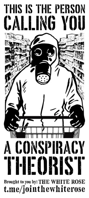 """(Image of someone in full haz-mat suit in the supermarket) """"This is the person calling you a conspiracy theorist"""""""