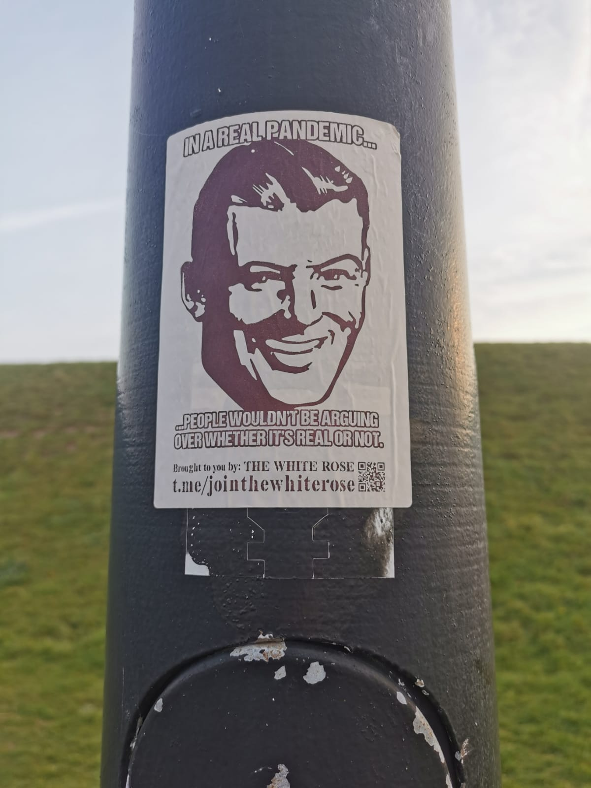 """Sticker on a lamppost: line drawing of a smiling man """"In a real pandemic…people wouldn't be arguing over whether it's real or not"""" – white text with a black outline on a white background."""