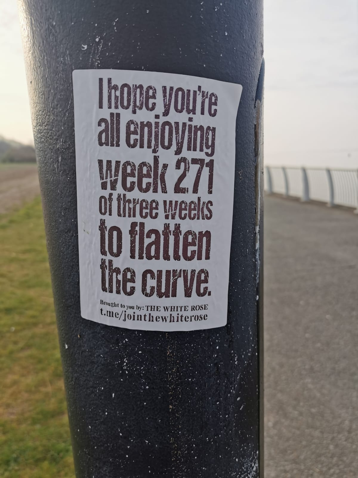 """Sticker on a lamppost: """"I hope you're enjoying week 271 of three weeks to flatten the curve"""" - black text on a white background"""