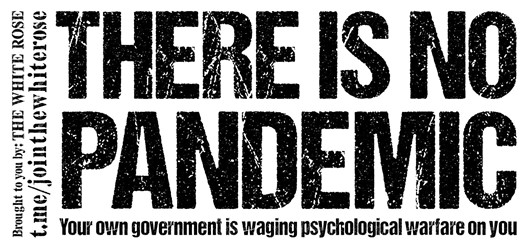 """""""There is no pandemic: Your own government is waging psychological warfare on you"""" - black text on a white background"""