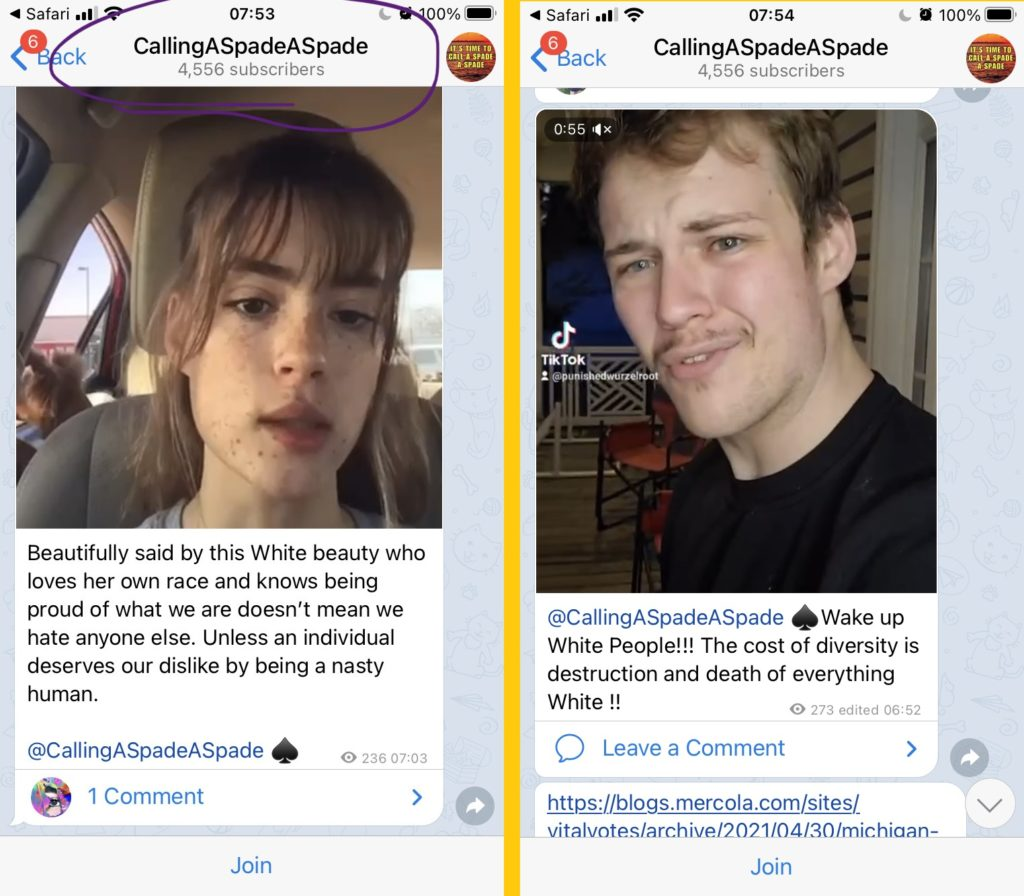 """Two messages in """"CallingASpadeASpade"""" (4556 members.   The first message shows a video of a lady, with the caption: """"Beautifully said by this White beauty who loves her own race and knows being proud of what we are doesn't mean we hate anyone else. Unless an individual deserves our dislike by being a nasty human.""""  The message tags and links to the channel """"@CallingASpadeASpade""""  The second message shows a video of a man, with the caption """"@CallingASpadeASpade Wake up White People!! The cost of diversity is destruction and death of everything White!!"""""""
