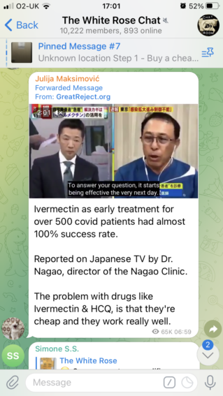 """A message in """"The White Rose Chat"""" (10,222 members, 893 online). Message reads: """"Ivermectin as early treatment for over 500 covid patients had almost 100% success rate. Reported on Japanese TV by Dr. Nagao, director of the Nagao Clinic. The problem with drugs like Ivermectin & HCQ, is that they're cheap and they work really well"""" - the message is forwarded from GreatReject.org."""