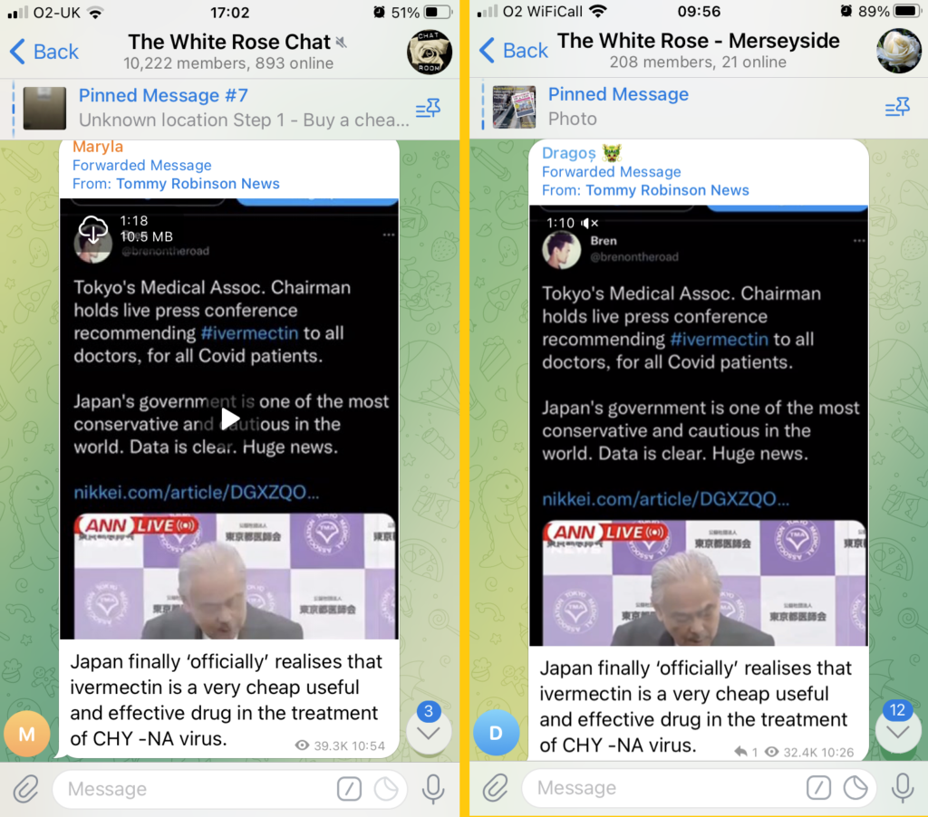 """The same message shared to two groups - """"The White Rose Chat"""" with 10,222 members and 893 online, and """"The White Rose - Merseyside"""" with 208 members and 21 online.  The message is forwarded from Tommy Robinson News and shows a video with the message """"Japan finally 'officially' realises that ivermectin is a very cheap useful and effective drug in the treatment of CHY - NA virus""""  Messages in each chat come from different users."""