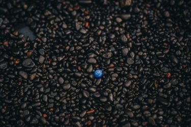 A single blue shell amongst black and brown pebbles